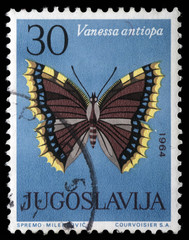 Stamp printed in Yugoslavia shows butterfly, circa 1964