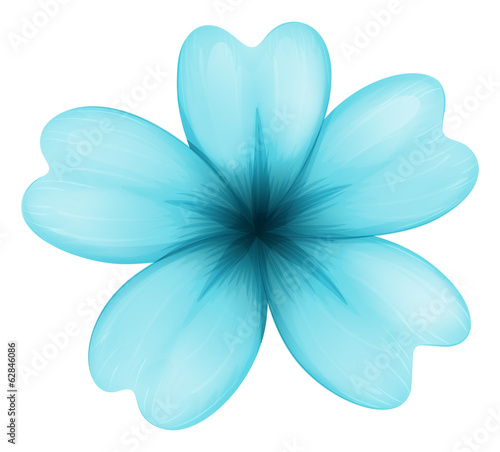 A blue five-petal flower