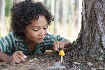 Trees on the shores of a lake. A child lying down inspecting a small yellow funghi mushroom.
