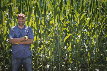 A young man standing with arms folded, in front of a very tall maize, corn crop in the field.