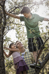 An adult with two children climbing trees.
