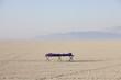 Sleeping bag on cot in vast, barren desert, dawn