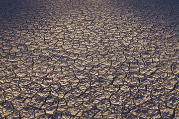 Dry cracked desert surface, Black Rock Desert in Nevada, USA