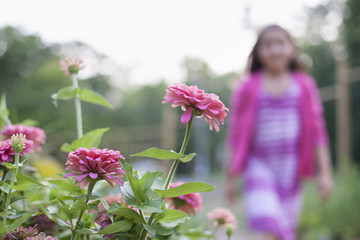 A young girl in a pink dress, walking past a bed of flowers in an organic garden.