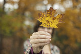 Woodland in autumn. A woman holding an autumnal leaf, a maple leaf in her hand.