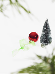 Still life. Green leaf foliage and decorations. A pine tree branch with green needles. Christmas decorations. A red ornament.