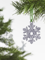 Still life. Green leaf foliage and decorations. A pine tree branch with green needles. Christmas decorations. A silver icicle shape hanging from a tree.