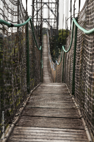 Amazon suspension bridge