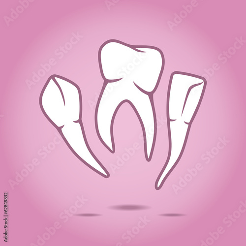 Vector illustration of teeth