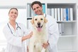 Happy veterinarians with dog