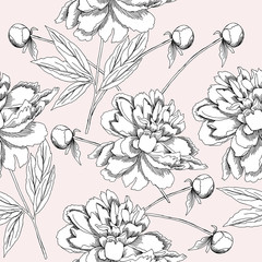 Seamless pattern  with black and white peonies.