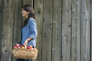 A woman carrying a basket of freshly picked fruit. Plums and peaches.