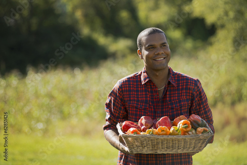 A farmer with a tray of organic bell peppers freshly harvested from the vegetable beds.