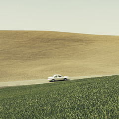 A car driving on am uphill slope, surrounded by farmland and lush, green fields of wheat, near Pullman, Washington.