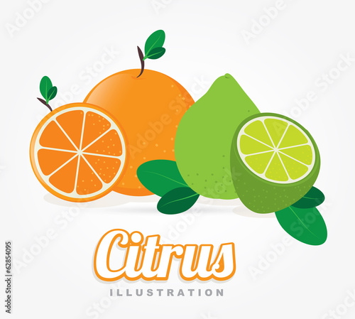 Fruits design