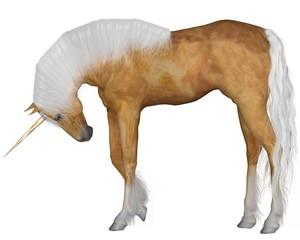 Palomino Unicorn - Head Down
