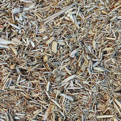 Close up of bark wood chips used for landscaping, near Quincy