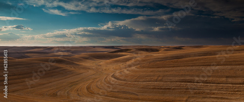 Farmland landscape, with ploughed fields and furrows in Palouse, Washington, USA