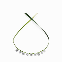 A thin green strap leaf in a loop with small sparkling gem cut clear glass beads. A necklace with a natural feel.