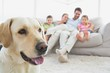 Happy family sitting on couch with their pet labrador in