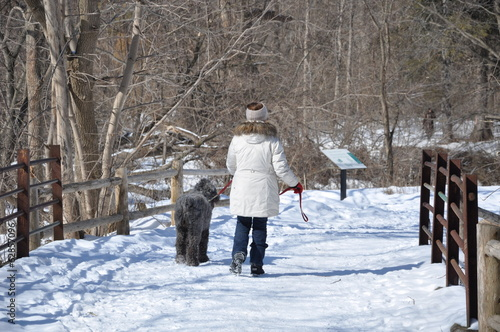Woman and her dog walking during winter