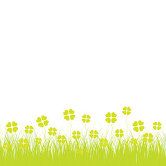 Grass with cloverleafs, white background