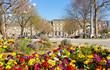 Bunter Frühling in Stuttgart