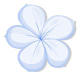 A five-petal flower