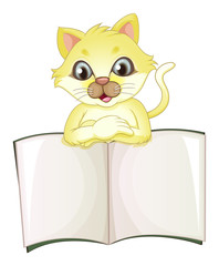A cute yellow cat opening an empty book