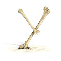 bones font letter Y