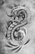 tattoo snake  illustration, handmade draw over vintage paper