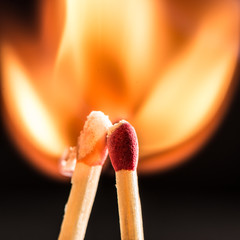 Matches IV