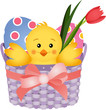 Chick Inside an Easter Basket