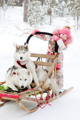 little girl and Huskies in winter forest