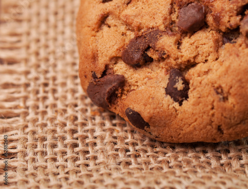 A closeup shot of a chocolate chip cookie
