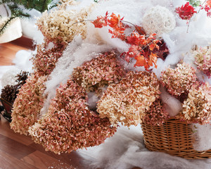 Bouquet from hydrangea, autumn leaves and snow.
