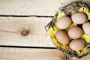 Easter background  - eggs in nest