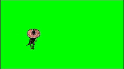 dinosaurs dilophosaurus runs - green screen
