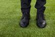 Businessman Standing On Green Grass