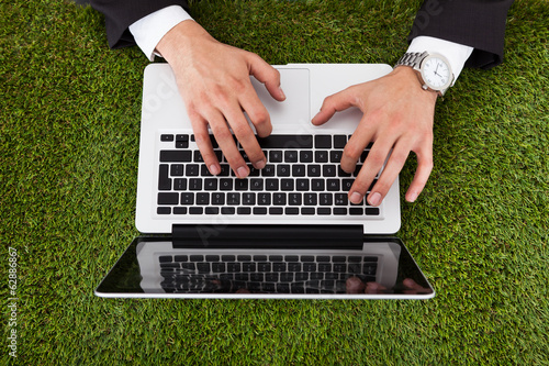 Businessman Using Laptop On Grass