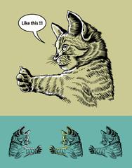 Thumb Up Cat Illustration