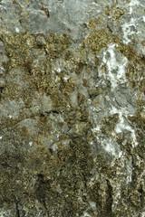 Камень известняк