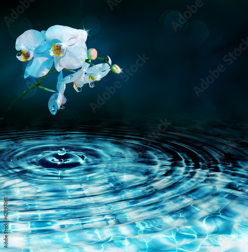 drop in water with orchid, in dark