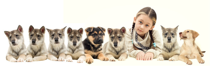 child and many puppies