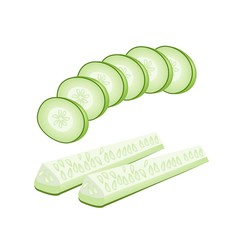 Delicious Fresh Cucumber Slices on White Background