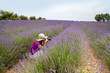 Female sitting in lavender field taking photos in Provence, Fran