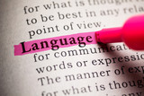 Language - 62900673