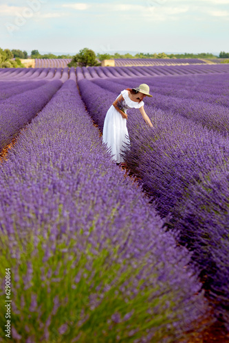 Deurstickers Lavendel Beautiful young lady picking some lavender in lavender field. Pr