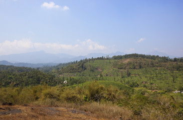 wayanad hill country