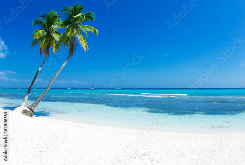canvas print picture tropical sea